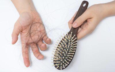 Perte de cheveux, une fatalité ?