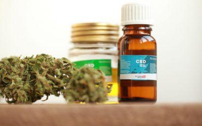 L'huile de CBD : le remède miracle contre la calvitie?